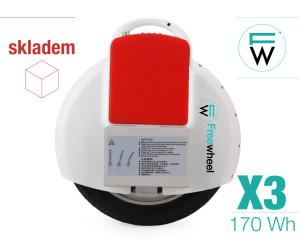 X3 | 170 Wh